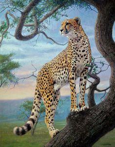 Cheetah painting by Gabriel Hermida
