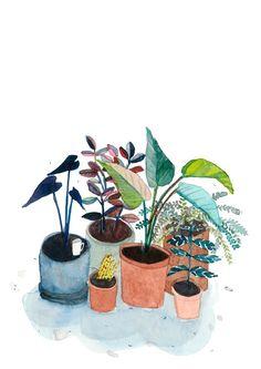 Potted Garden, Elizabeth Barnett