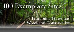 100 sites promoting woodland conservation, mainly USA . Tree Watch, Sierra Club, Mother Earth, Climate Change, Conservation, Habitats, Woodland, Environment, Usa