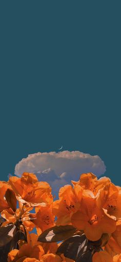 Iphone Background Wallpaper, Galaxy Wallpaper, Moon Pictures, Nature Pictures, Fantasy Art Landscapes, Paper Crafts, Kawaii, Sky, Nice Face