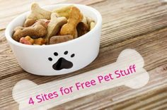 Freebies for Pets? Find Them on These 4 Sites Daily!