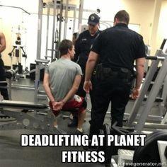 fitness memes | Deadlifting at planet fitness - curl bro | Meme Generator