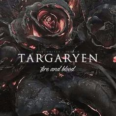 game of thrones targaryen fire and blood Daenerys Targaryen, Cersei Lannister, Khaleesi, Game Of Thrones Books, Game Of Thrones Fans, Got Dragons, Mother Of Dragons, Fantasy Names, Game Of Trones