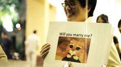 Esta Es La Propuesta De Matrimonio Más Original Que Verás
