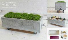 DIY – Concrete Planter
