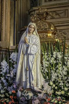 Mary Jesus Mother, Blessed Mother Mary, Mary And Jesus, Blessed Virgin Mary, Virgin Mary Statue, Images Of Mary, Queen Of Heaven, Mama Mary, Lady Of Fatima