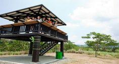 Birdwatching in Nuvali Eco City, Bird Watching, Outdoor Activities, Philippines, Sustainability, Gazebo, Real Estate, Outdoor Structures, Cabin