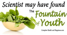 Have you always wanted to find the fountain of youth? Well we might have!