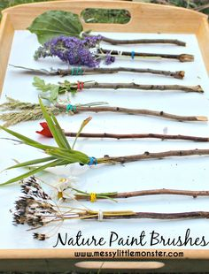 How to make and paint with nature paint brushes. A simple outdoor spring/ summer activity for toddlers, preschoolers, eyfs and older kids. - Spring Activities for Kids Summer Activities For Toddlers, Nature Activities, Outdoor Activities For Preschoolers, Reggio Art Activities, Outdoor Toddler Activities, Art Activities For Kids, Kids Outdoor Crafts, Forest School Activities, Outdoor Fun For Kids