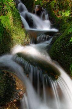 monte aloia spain | Spring in Mount Aloia, Tui, Galicia, Spain | Outdoors | Pinterest ...