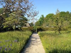Meadow at Great Dixter, East Sussex (via mug-mike.blogspot...)