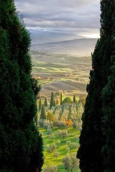 Tuscany Italy Countryside Bella Tuscany Pinterest Tuscany - Tranquil photos capture the beauty of tuscanys countryside