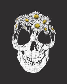 Illustration art Black and White artwork skull Daisy daisies