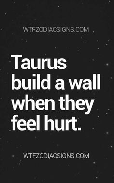 Very true! I have built this wall with several! Not just about being hurt but can't be trusted!!!
