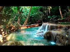 10 Videos of Nature Sounds for Relaxation - Resilient
