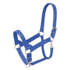 Tough-1 Nylon Halter with Rope Overlay Royal Blue - 50-925-4-0, Durable