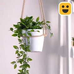 Diy Crafts Hacks, Diy Home Crafts, Jute Crafts, House Plants Decor, Plant Decor, Home Plants, Interior Plants, Hanging Plants, Plants Indoor