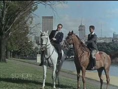From the Film Australia Collection. Made by The Commonwealth Film Unit Directed by Douglas White. A picture of life in the Victorian capital of Melbour. Brisbane, Melbourne, School Themes, Australia Living, Commonwealth, Historical Photos, Old Photos, Vietnam, Cities