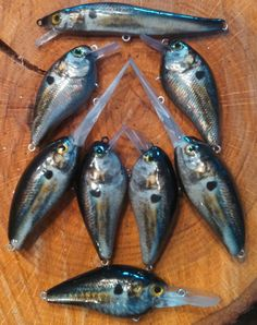 1000 images about airbrushed lures on pinterest bait for Airbrushing fishing lures