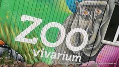 Von weißen Pfauen, blauen Fröschen und Riesenschmetterlingen – zu Besuch im Vivarium in Darmstadt / Hessen. Zoo, Tierpark, Vivarium, Types Of Animals, Darmstadt, Hessen, Animales, Terrarium