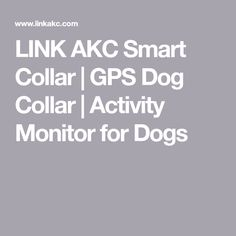 LINK AKC Smart Collar | GPS Dog Collar | Activity Monitor for Dogs
