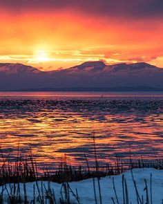 Snowy Sea Island Sunset  Tonight's wintery sunset reflection on the mudflats near Vancouver International Airport (YVR) and Iona Beach Regional Park on Sea Island. Looking over the Salish Sea (Strait of Georgia) over Valdes Island to the sun going down over Ladysmith and the mountain ranges on Vancouver Island. Captured this evening in Richmond BC  January 3 2016