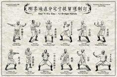 Hung gar stances