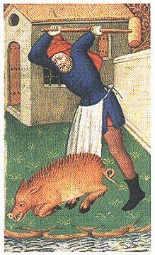 Slaughtering a hog