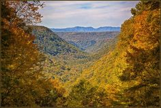 West Virginia is sometimes mocked by outsiders. We love our Wild and Wonderful mountain state. Here are some reasons why. Virginia Plan, Towns In West Virginia, West Virginia Tourism, West Virginia Vacation, Virginia Hill, Cool Places To Visit, Places To Travel, West Virginia Waterfalls, Monongahela National Forest