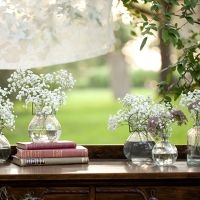 baby's breath and old books