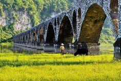 Shanglin Dong Hong Wetland, Nanning, China
