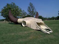 Cattle skull, Frontier Texas, in Abilene Texas