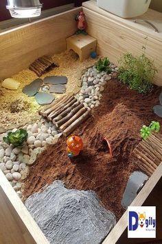 Tortoise table has live food now - Schildkrötenbau - Beef Tortoise House, Tortoise Food, Tortoise Habitat, Tortoise Table, Sulcata Tortoise, Hamster Habitat, Hamster Cages, Tortoise Terrarium, Turtle Terrarium