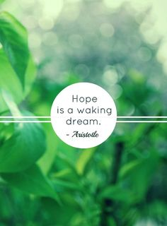 hope is a waking dream // aristotle