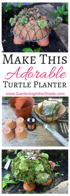 See how easy it is to make this turtle succulent planter for your garden!
