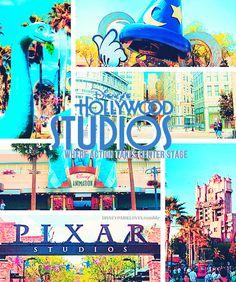 hollywood studios <3