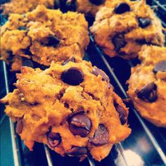 Pumpkin Chocolate Chip Cookies -- gluten free, sugar free, soy free, vegan