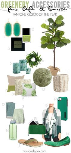 Using Greenery in your Home and Life (Pantone's Color of the Year): Accessories for fashion and home that celebrate the cheery, green tones of earth and nature.