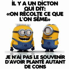 Il y a un diction qui dit... ...