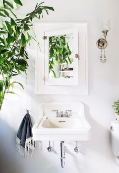 indoor plants / schoolhouse lighting / bathroom inspiration