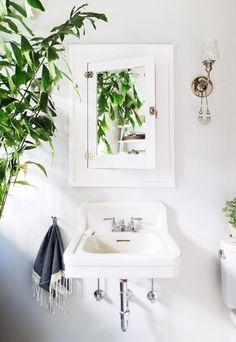 indoor plants / schoolhouse lighting / bathroom inspiration