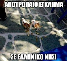 Greek Memes, Funny Greek Quotes, Funny Qoutes, Stupid Funny Memes, Funny Texts, Hilarious, Memes Humor, Jokes, Laughing Quotes