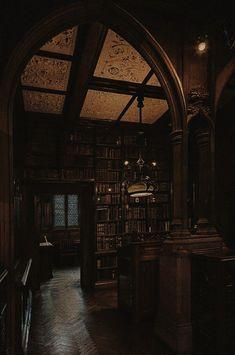 Paradis Sombre, Dark Tumblr, Slytherin Aesthetic, Dark Paradise, Vampire, Brown Aesthetic, Aesthetic Pictures, Aesthetic Wallpapers, Light In The Dark