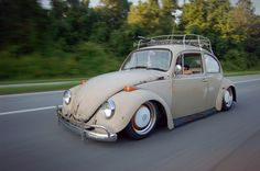 vw bugs | Shit is so gnarly. Bags? Fuck 'em heh.