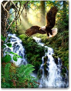 Diamond painting cross stitch waterfall eagle diamond mosaic rhinestone square drill full diamond embroidery painting paintings * Clicking on the image will lead you to find similar product on AliExpress website Beautiful Birds, Animals Beautiful, Eagle Pictures, Eagle Art, Cross Paintings, Wildlife Art, Bird Art, Landscape, Illustration