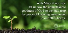 jesuitprayer.org - Check out our prayer site for daily scripture Ignatian reflection and prayer to anchor your day strengthen your resolve and remember what matters most.