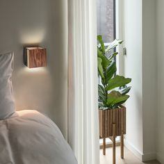 Leaves wall lamp is a simple and elegant piece for any room. Put one in your project and give a special touch! Furniture, Room, American Walnut, Lamp, Wall, Home Decor, Wall Lamp, Wood Veneer, Walnut Wood