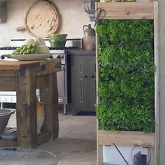 herb garden: on a wall, inside your house. Neat idea, and I really like that island in the background