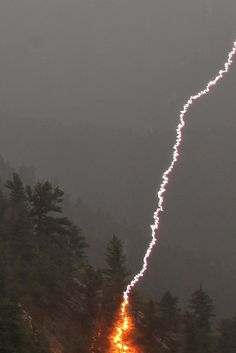 "Lightning strikes pine tree by . ""I managed to catch this lightning strike on a pine tree last night. Fortunately, there was heavy rain at the time, so the fire was extinguished immediately."" Golden, Colorado, US. Tornados, Thunderstorms, All Nature, Science And Nature, Amazing Nature, Natural Phenomena, Natural Disasters, Thunder And Lightning, Lightning Storms"