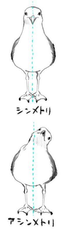 P's tumblr, jinon: Twitter / _Neillo_: シンメ鳥...